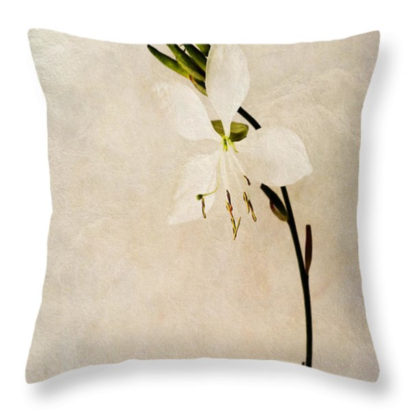 Beauty Throw Pillow by John Edwards