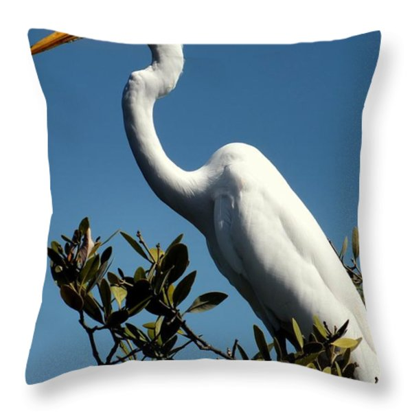 Beauty Of Sanibel Throw Pillow by Karen Wiles