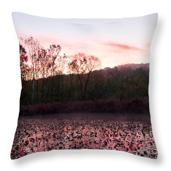 Beaver Marsh Throw Pillow by David Yunker