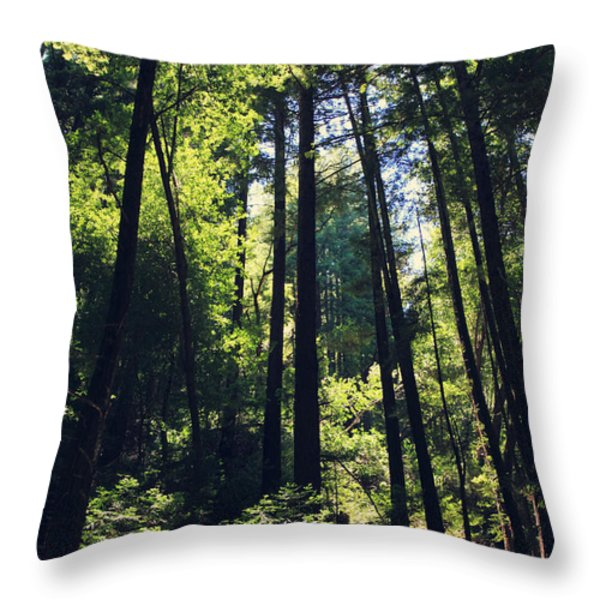 Because You Loved Me Throw Pillow by Laurie Search