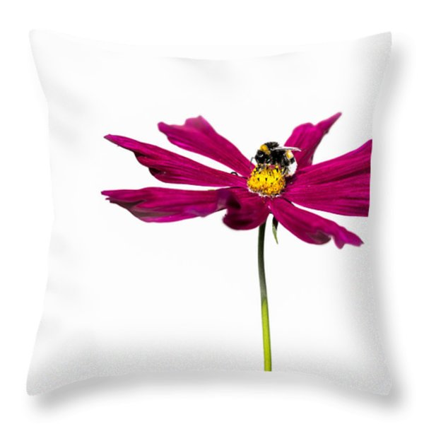 Bee At Work - Featured 3 Throw Pillow by Alexander Senin