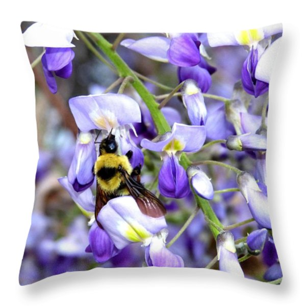 Bee In The Wisteria Throw Pillow by Will Borden