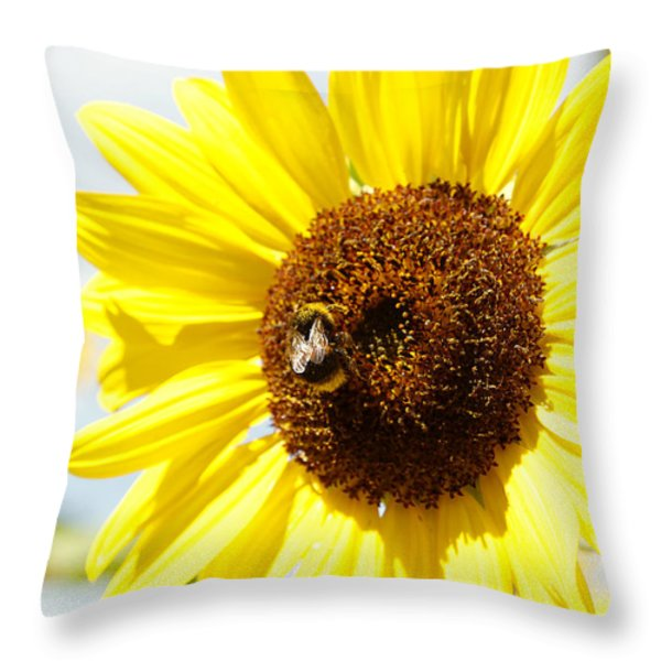 Bee Throw Pillow by Les Cunliffe