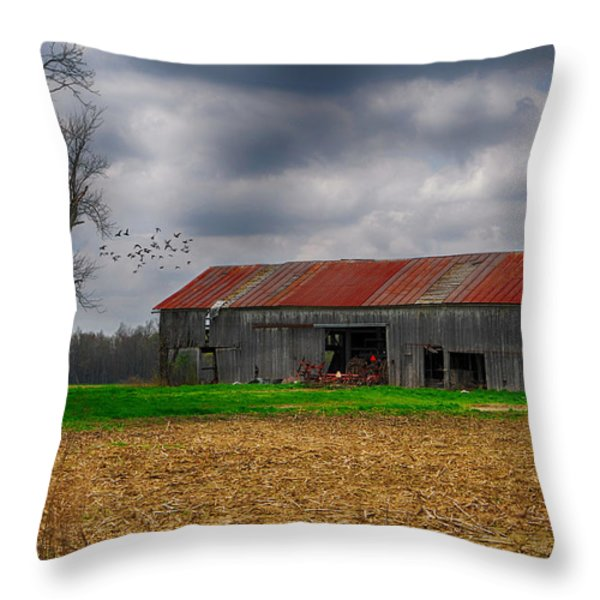 Before the Storm Throw Pillow by Mary Timman