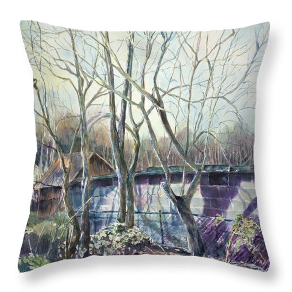 Behind The Shed Throw Pillow by Janet Felts