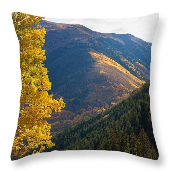 Behind The Veil Throw Pillow by Jim Garrison