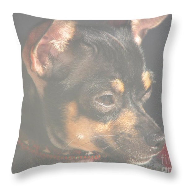 Bella Throw Pillow by Greg Patzer