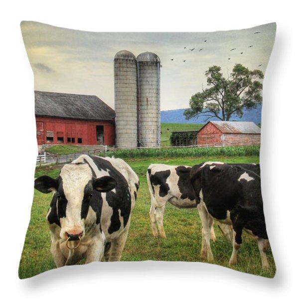 Belleville Amish Farm Throw Pillow by Lori Deiter