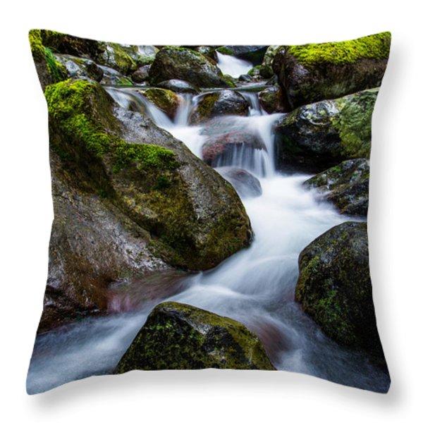 Below Rainier Throw Pillow by Chad Dutson