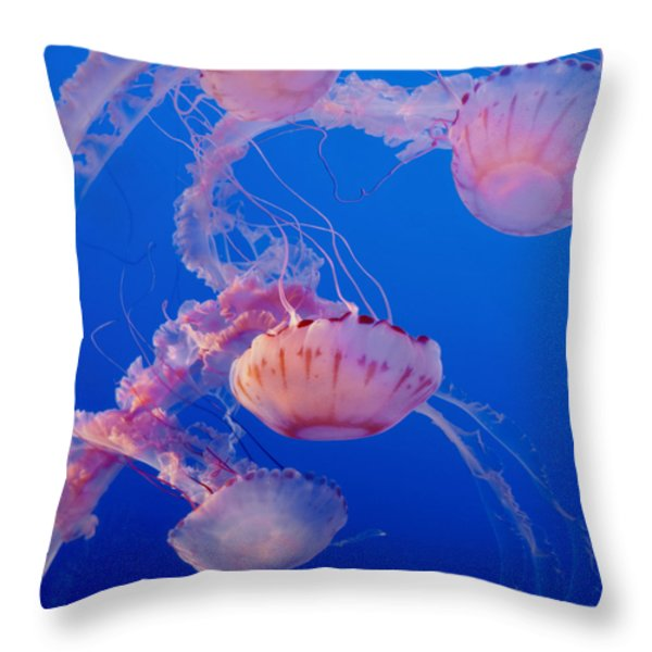 Below The Surface 3 Throw Pillow by Jack Zulli