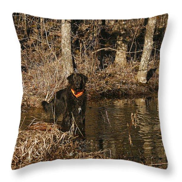 Ben Throw Pillow by Cindi Ressler