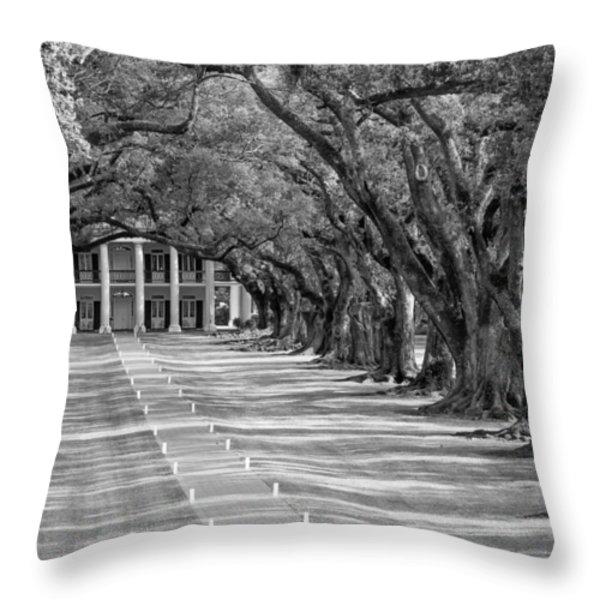 Beneath Live Oaks bw Throw Pillow by Steve Harrington