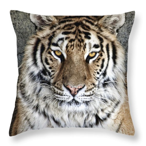 Bengal Tiger Vertical Portrait Throw Pillow by Tom Mc Nemar