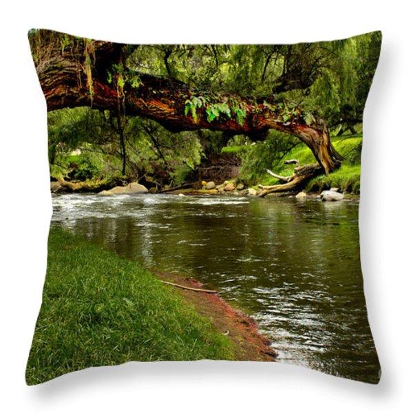 Bent But Not Broken Throw Pillow by Al Bourassa