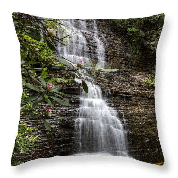 Benton Falls Throw Pillow by Debra and Dave Vanderlaan