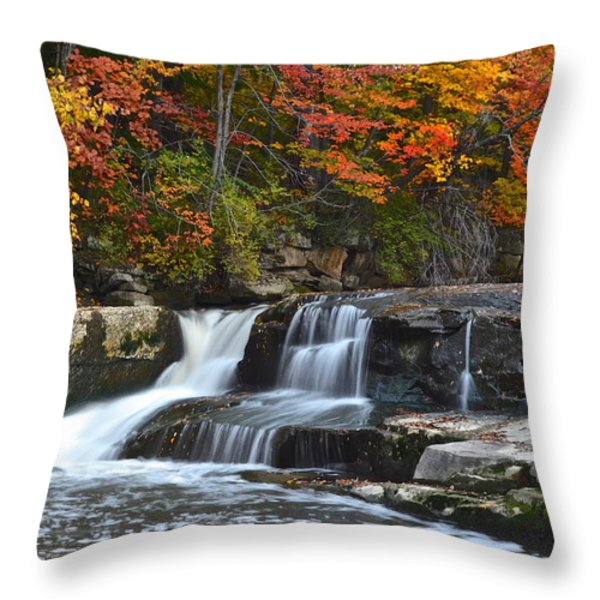 Berea Beauty Throw Pillow by Frozen in Time Fine Art Photography