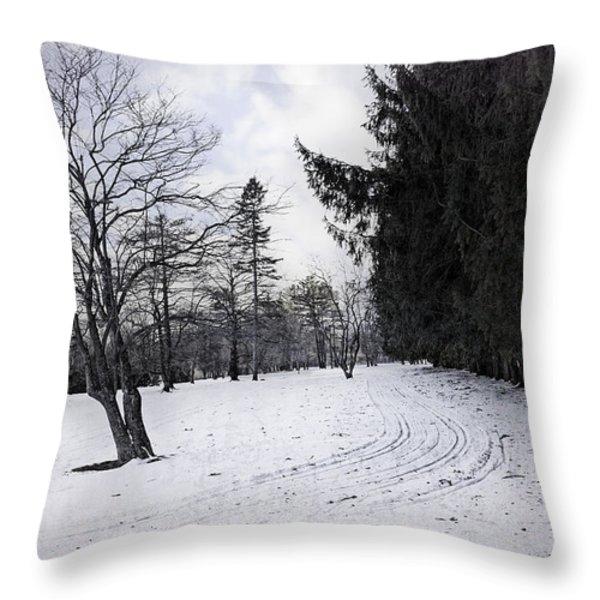 Berkshires Winter 9 - Massachusetts Throw Pillow by Madeline Ellis