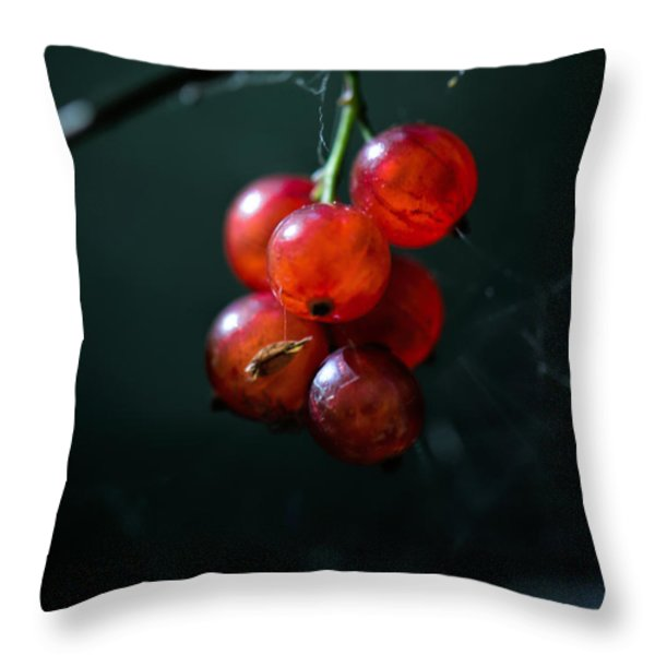 Berries Throw Pillow by Leif Sohlman