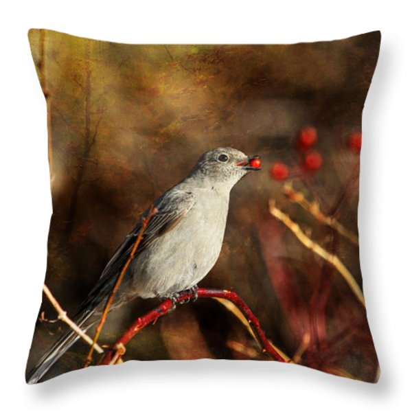 Berry Delighted Throw Pillow by Donna Kennedy