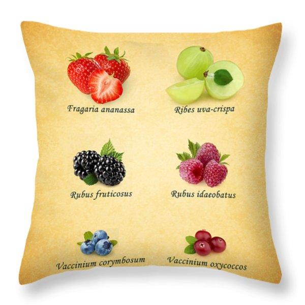 Berry Throw Pillow by Mark Rogan