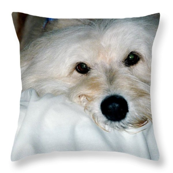 Bessie Eyes Throw Pillow by Randi Shenkman