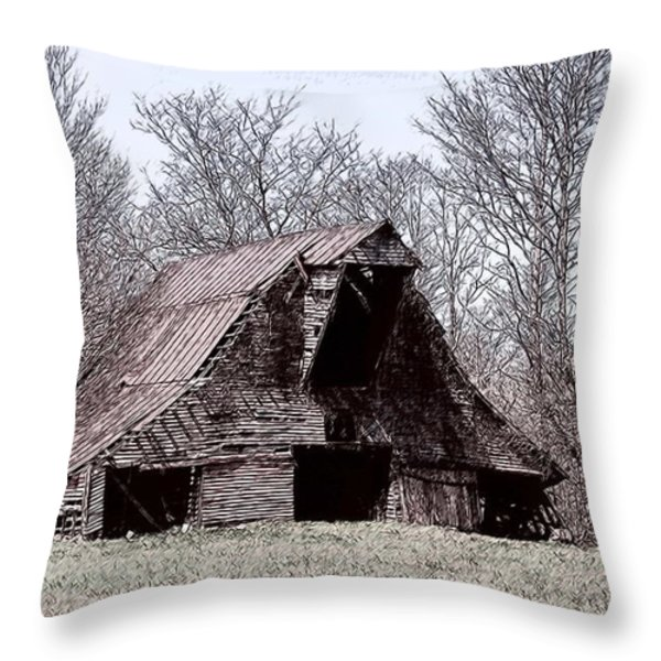 Better Days Throw Pillow by Bonnie Willis