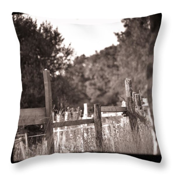 Beyond The Stable Throw Pillow by Loriental Photography