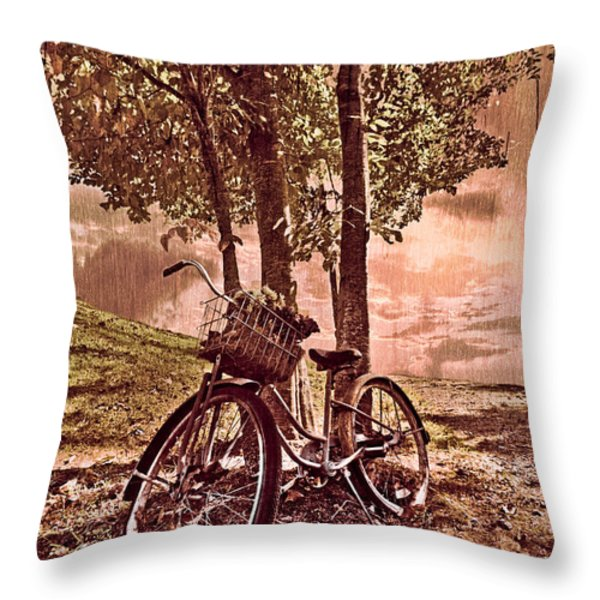 Bicycle In The Park Throw Pillow by Debra and Dave Vanderlaan