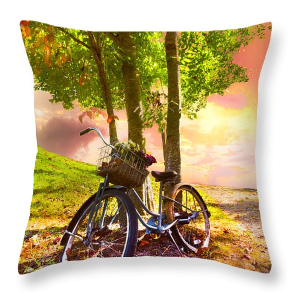 Bicycle Under the Tree Throw Pillow by Debra and Dave Vanderlaan