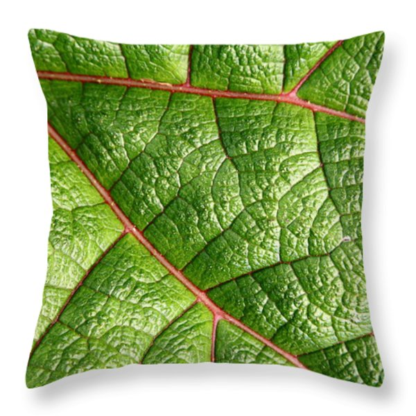 Big Green Leaf 5D22460 Throw Pillow by Wingsdomain Art and Photography