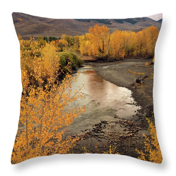 Big Lost River In Autumn Throw Pillow by Leland D Howard