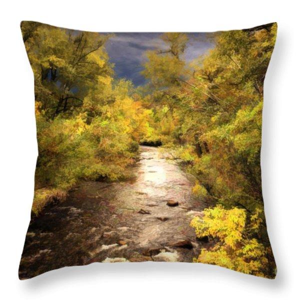 Big Thompson River 3 Throw Pillow by Jon Burch Photography
