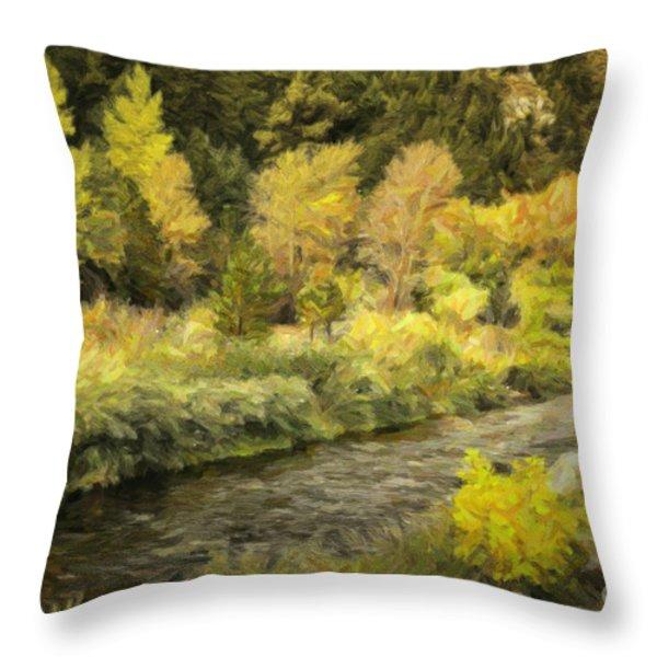 Big Thompson River 4 Throw Pillow by Jon Burch Photography