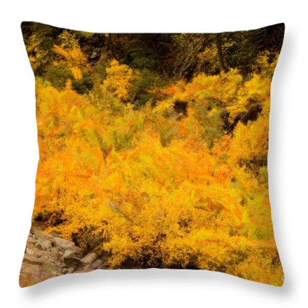 Big Thompson River - 9 Throw Pillow by Jon Burch Photography
