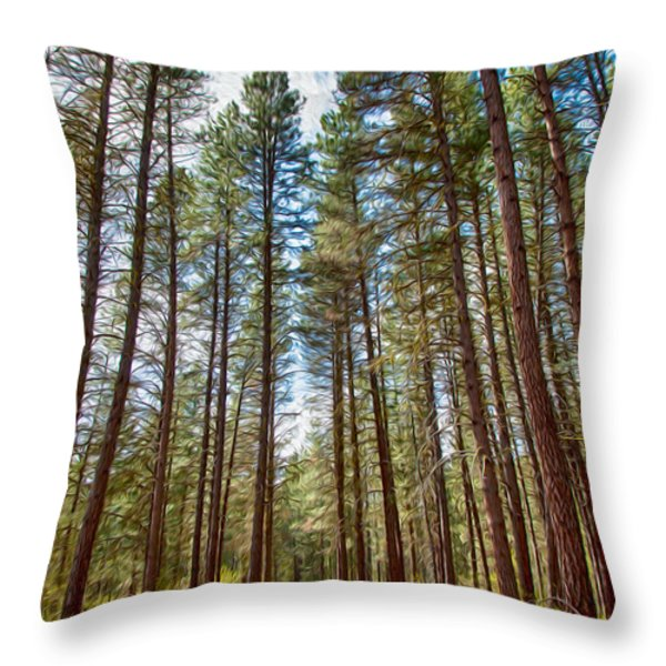 Big Valley Views MVSTA Trail Throw Pillow by Omaste Witkowski