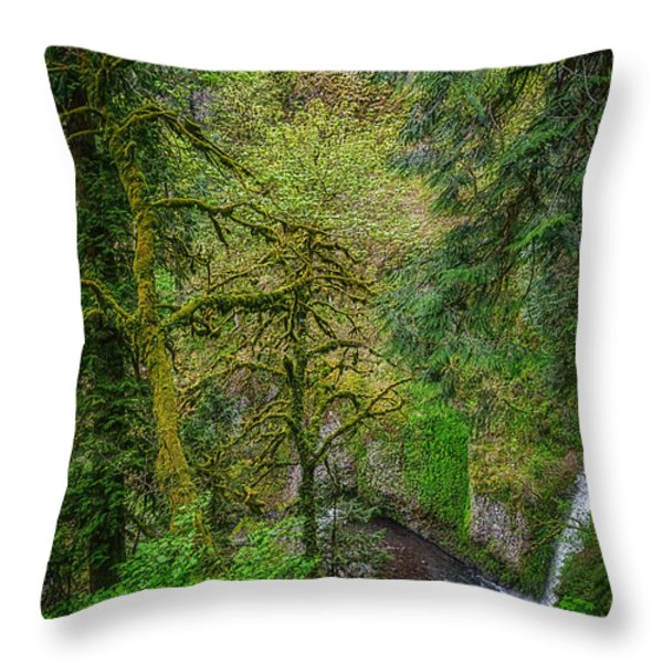 Bigfoot Country Throw Pillow by Jon Burch Photography