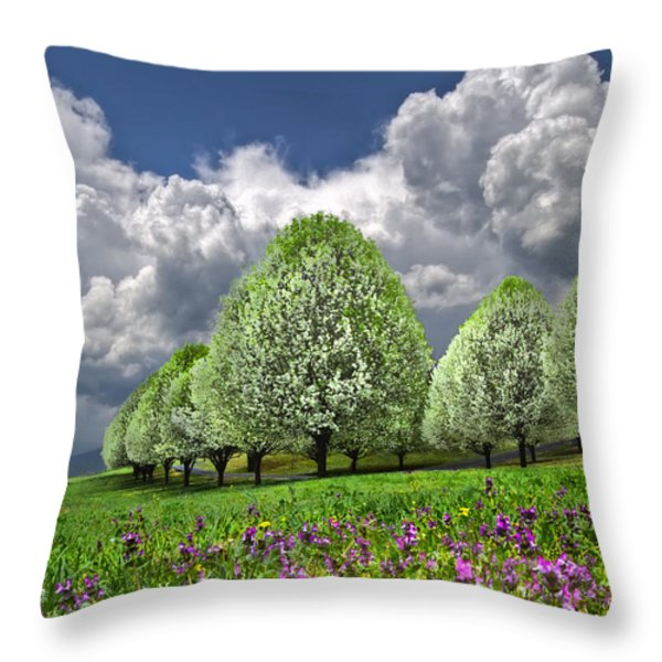 Billows Throw Pillow by Debra and Dave Vanderlaan