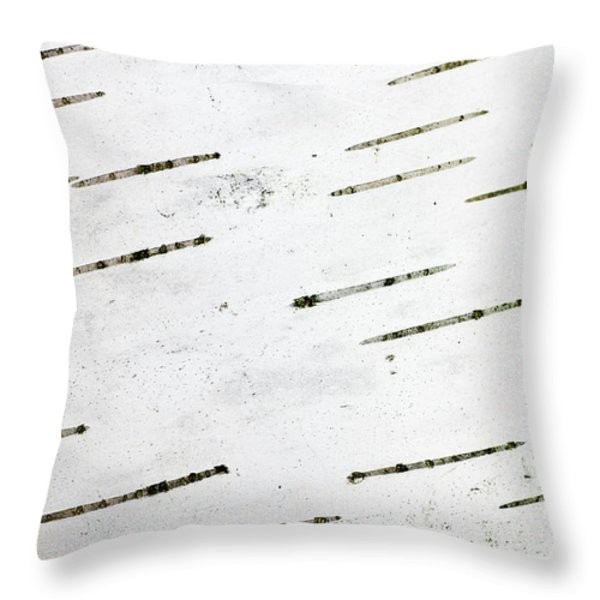 Birch Bark Throw Pillow by Steven Ralser