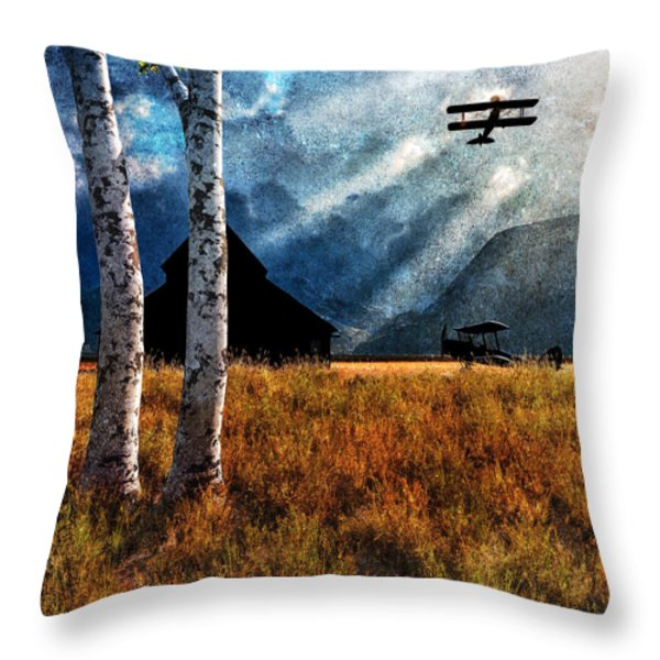 Birch Trees and Biplanes  Throw Pillow by Bob Orsillo