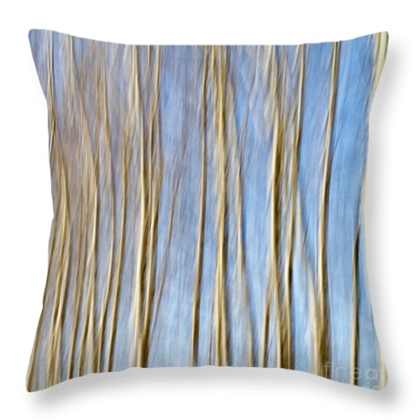 birch trees Throw Pillow by Stylianos Kleanthous