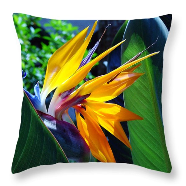 Bird of Paradise Throw Pillow by Susanne Van Hulst