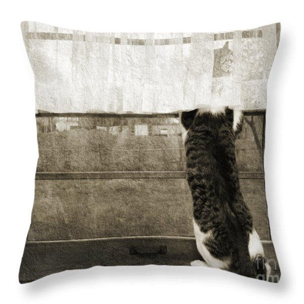 Bird Watching Kitty Cat Bw Throw Pillow by Andee Design