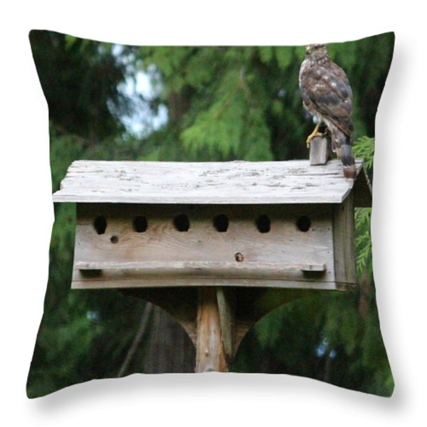 Birdhouse TakeOver  Throw Pillow by Kym Backland