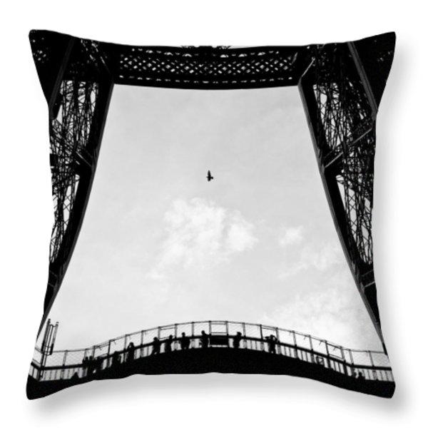 Birds-Eye View Throw Pillow by Dave Bowman