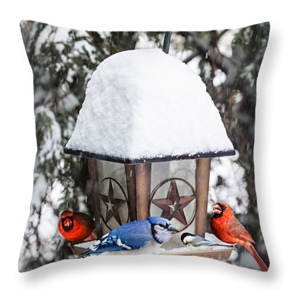 Birds On Bird Feeder In Winter Throw Pillow by Elena Elisseeva