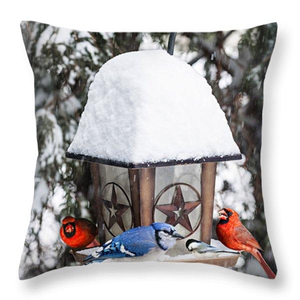 Birds on bird feeder in winter Throw Pillow by Elena Elisseeva