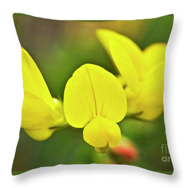 Birdsfoot trefoil in the meadows Throw Pillow by Heiko Koehrer-Wagner