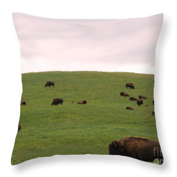 Bison Herd Throw Pillow by Olivier Le Queinec