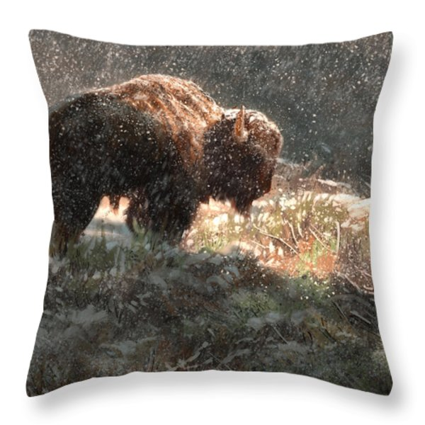 Bison In The Snow Throw Pillow by Aaron Blaise