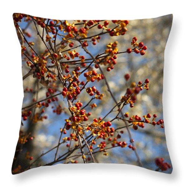 Bittersweet Vertical Throw Pillow by Teresa Mucha